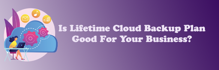 Is Lifetime Cloud Backup Plan Good For Your Business